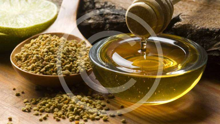 The Effect of Honey on Growth of Bifidobacteria